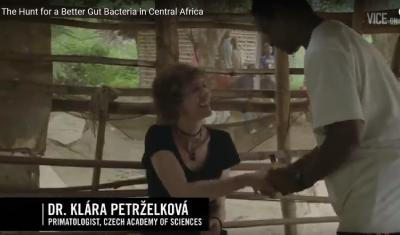 Documentary: The Hunt for a Better Gut Bacteria in Central Africa